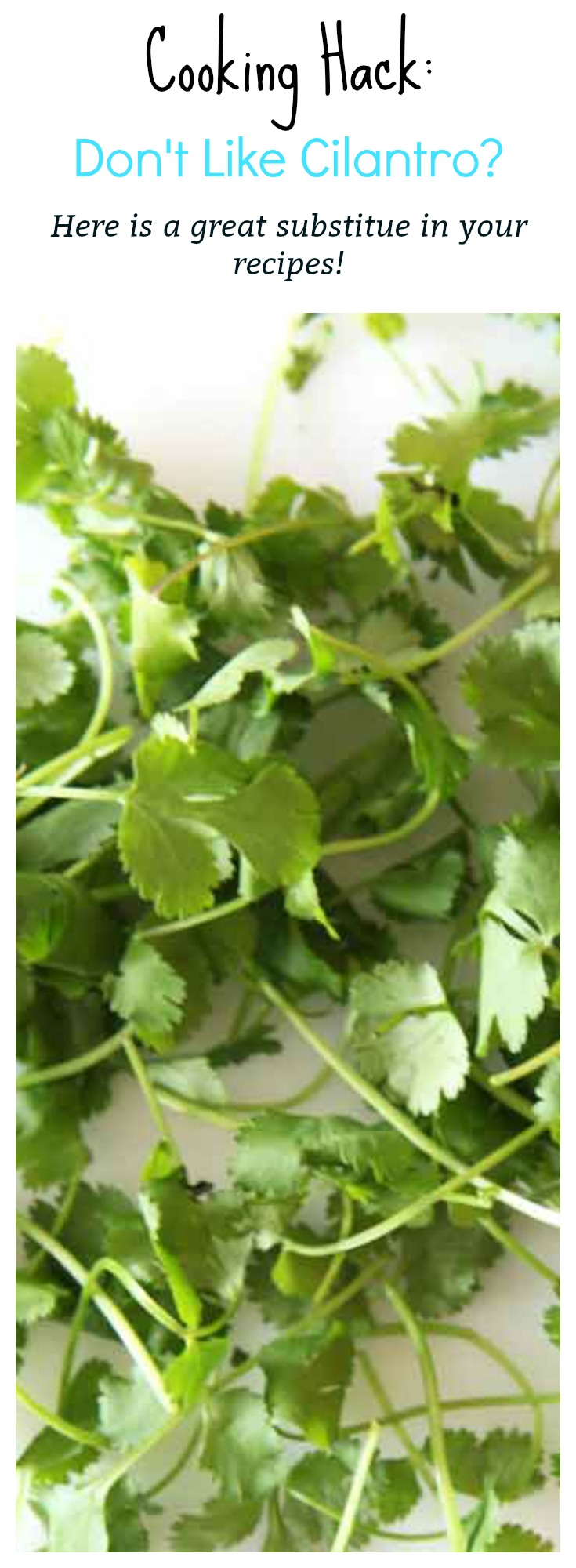 What to replace cilantro with if you don't like the taste.
