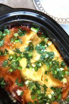 Slow Cooker Spinach Artichoke Dip Lasagna