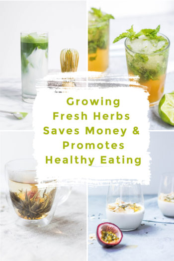 Growing Fresh Herbs Saves Money & Promotes Healthy Eating
